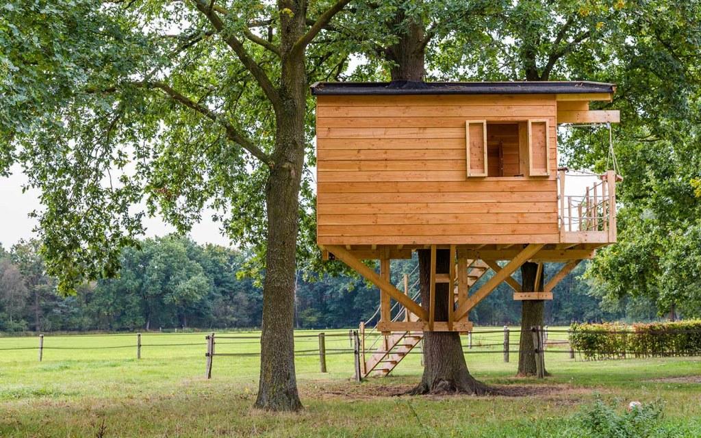 وسيلة الدعم في بيوت الاشجار