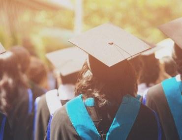 التخصصات الجامعية