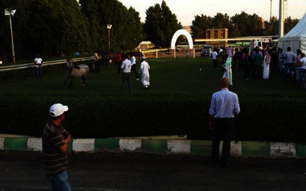 تعرف على أبرز نوادي الفروسية في المملكة العربية السعودية مدونة بيوت السعودية