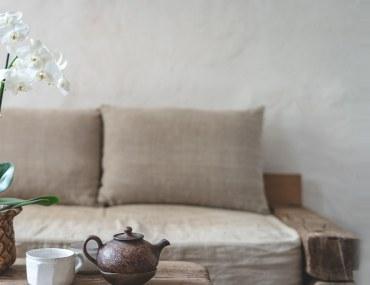 نباتات منزلية عطرية